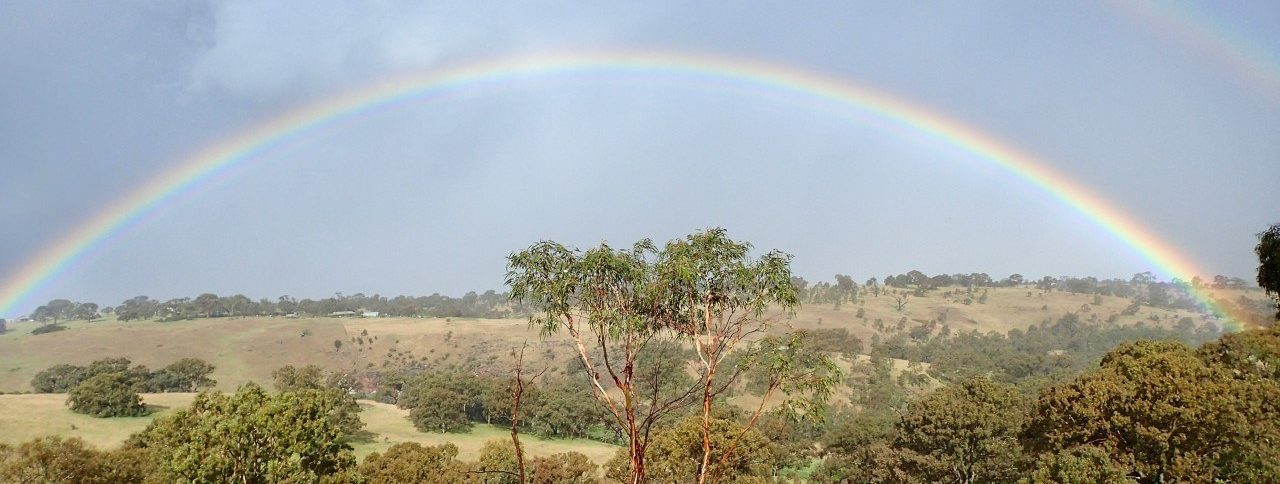 Bequests Rainbow photo